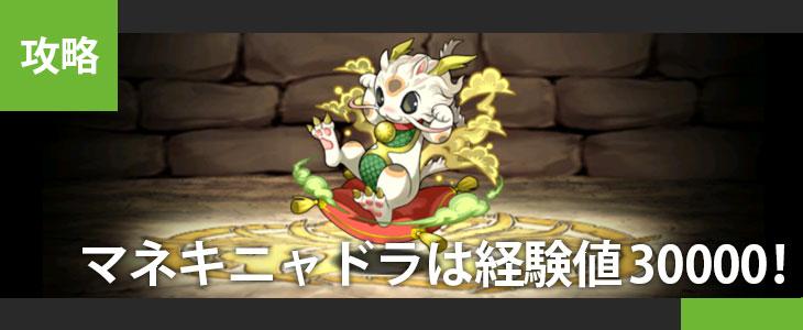 senngoku_02