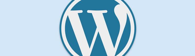 【初心者】無料ブログからWordPressに乗り換えて5ヶ月。ブログを公開するまでの流れと公開してから行った作業まとめ。